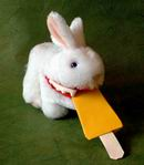 origami popsicle