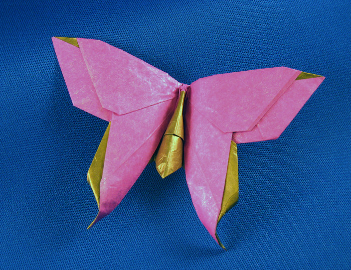 Origami Butterflies by Richard L. Alexander and Greg ... - photo#33