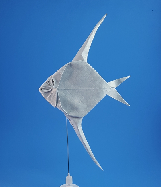 Origami Angel fish by Akira Yoshizawa Folded from a square of Astroparche cardstock by Gilad Aharoni on giladorigami.com