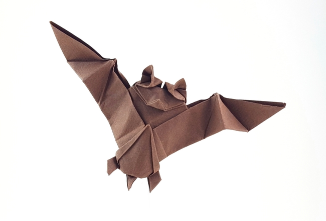 Origami Bat by Aoyagi Shoko folded by Gilad Aharoni