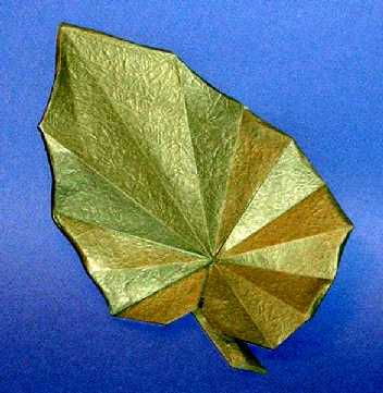 Origami Begonia Leaf By Peter Engel Folded Gilad Aharoni