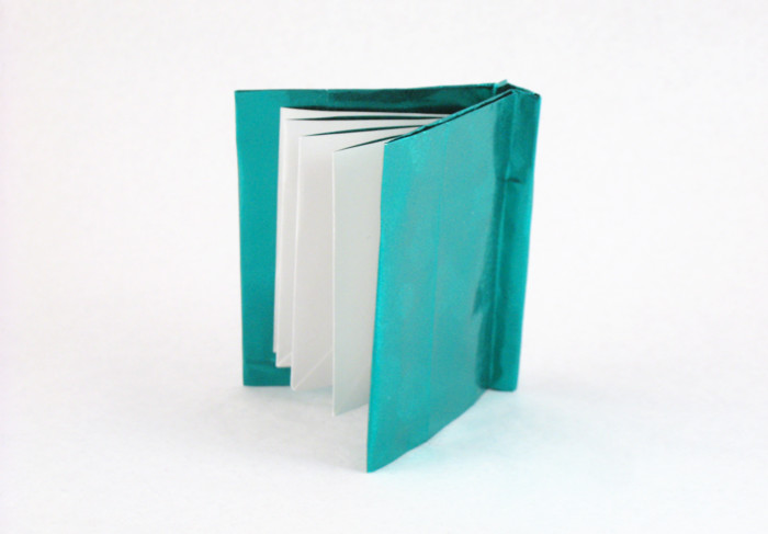 Amazon.com: Origami Extravaganza! Folding Paper, a Book, and a Box ... | 487x700