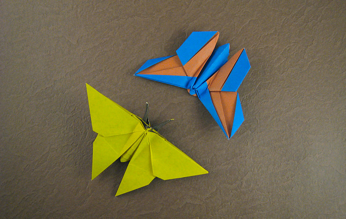 Origami Butterfly For Rosalind Koh By Ronald Folded Gilad Aharoni