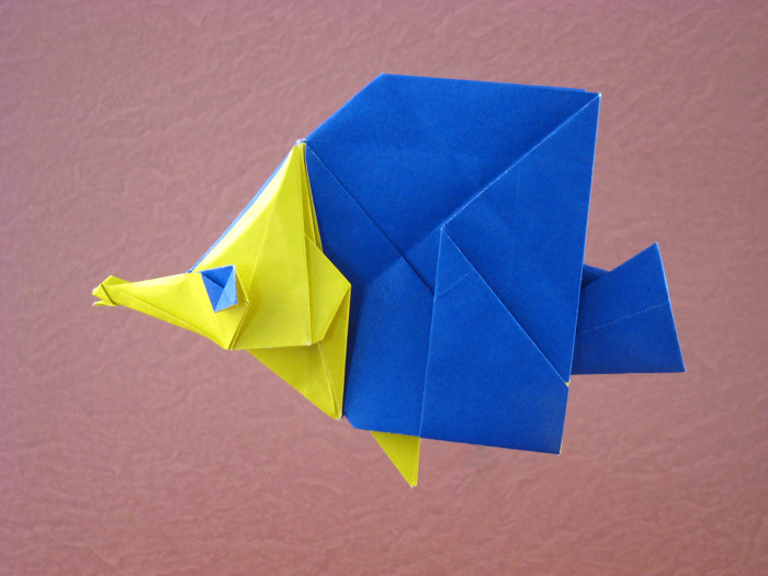 Origami Butterfly fish by Seo Won Seon (Redpaper) folded by Gilad Aharoni