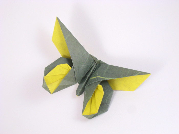 Michael LaFosse's Origami Butterflies by Michael G ... - photo#17