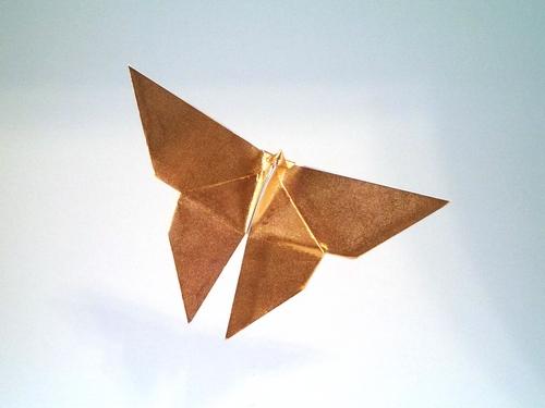Origami Butterfly By Akira Yoshizawa Folded Gilad Aharoni On Giladorigami