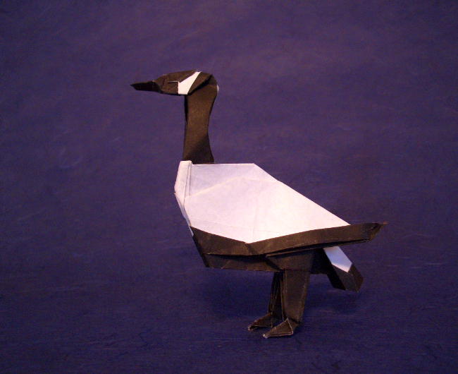 Origami Canada goose by John Montroll Folded from a square of origami paper by Gilad Aharoni on giladorigami.com