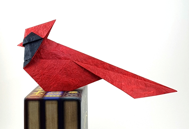 Origami North American Cardinal by Michael G. LaFosse folded by Gilad Aharoni on www.giladorigami.com