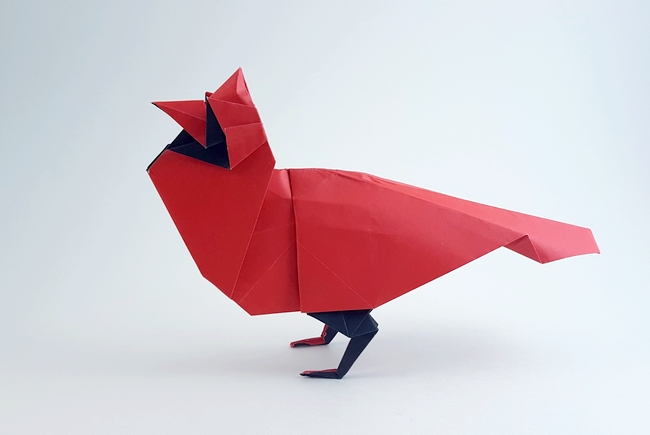 Origami North American Cardinal by Robert J. Lang Folded from a square of duo origami paper by Gilad Aharoni on giladorigami.com