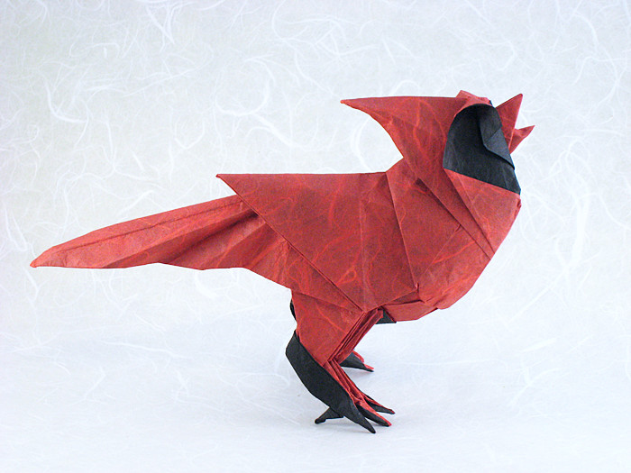 Origami North American Cardinal - singing by Roman Diaz Folded from a square of double-sided Unryu paper by Gilad Aharoni on giladorigami.com
