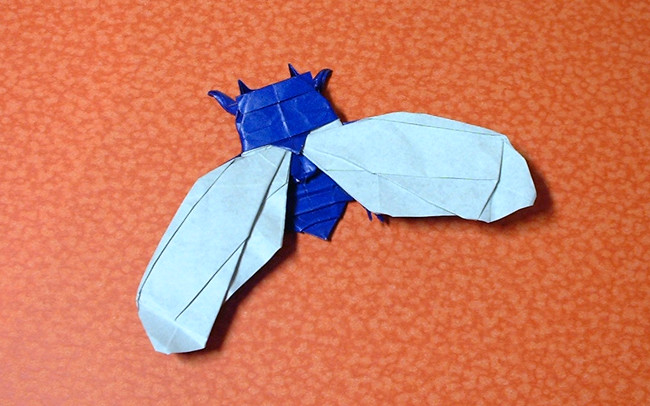 Origami Cicada by Lionel Albertino folded by Gilad Aharoni on giladorigami.com