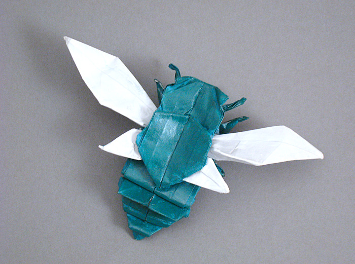 Origami Cicada - flying by Fumiaki Kawahata Folded from a square of origami paper by Gilad Aharoni on giladorigami.com