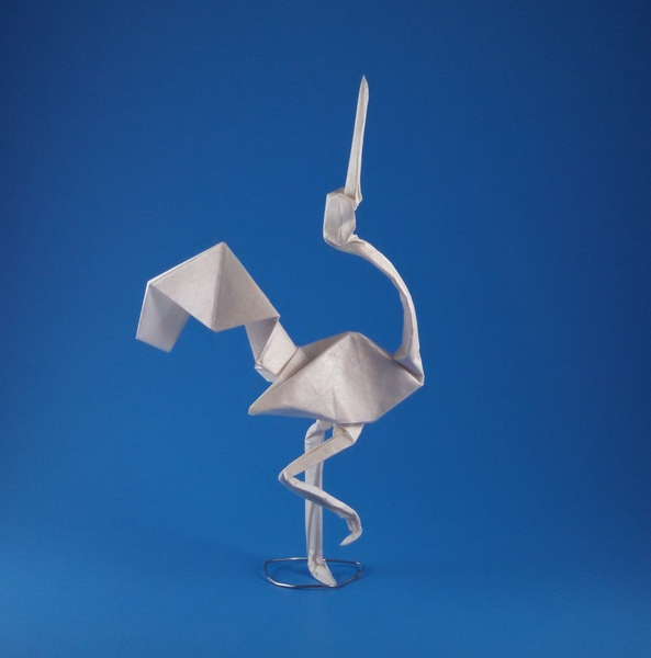 Origami Crane By Nicolas Terry Folded Gilad Aharoni
