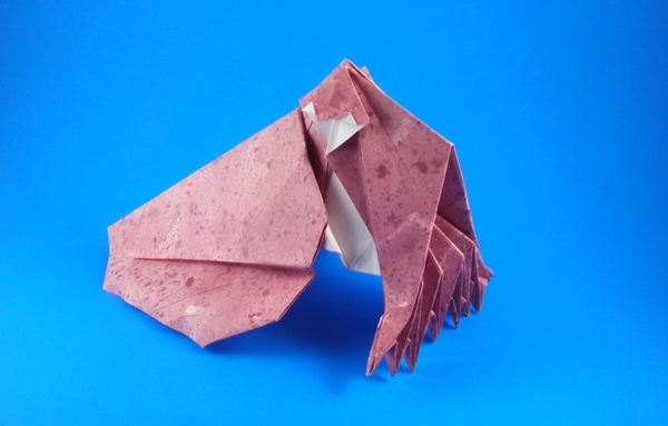 Origami Cuttlefish by John Szinger Folded from a square of scrap-booking paper by Gilad Aharoni on giladorigami.com