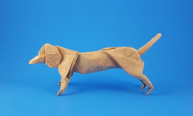 Dachshund Artur Biernacki Gilads Origami Page