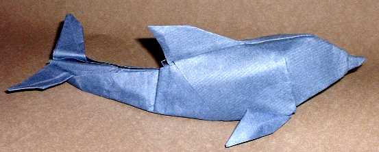Origami Dolphin by Gabriel Alvarez Casanovas Wet-folded from a square of 90gsm Fabriano paper by Gilad Aharoni on giladorigami.com