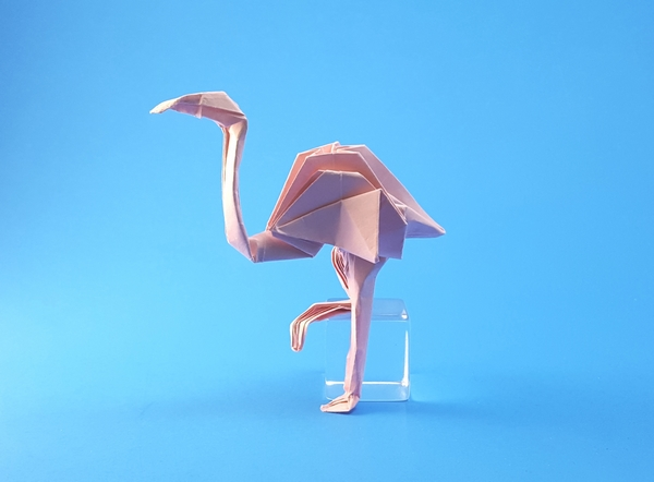 Origami Flamingo by John Montroll folded by Gilad Aharoni on giladorigami.com
