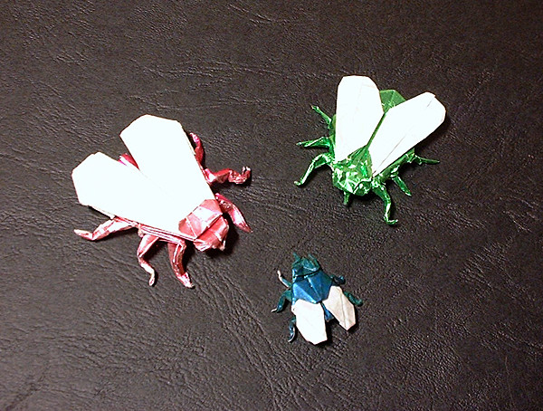 Origami Fly by Jan Willem Derksen folded by Gilad Aharoni on giladorigami.com