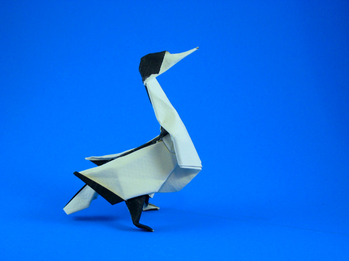 Origami Gannet by Ryan Welsh Wet-folded from a square of Canson watercolor paper by Gilad Aharoni on giladorigami.com