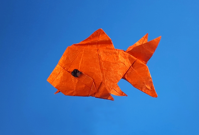 Origami Goldfish by Quentin Trollip folded by Gilad Aharoni