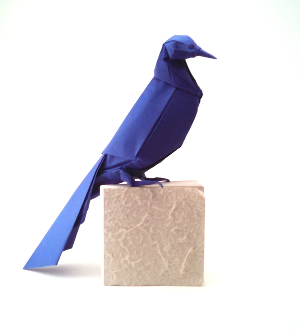 Origami Grackle by Michael G. LaFosse Folded from a square of cardstock by Gilad Aharoni on giladorigami.com