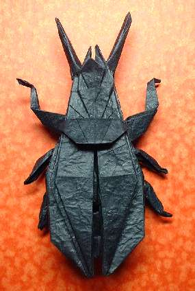 Origami Ground beetle by John Montroll folded by Gilad Aharoni