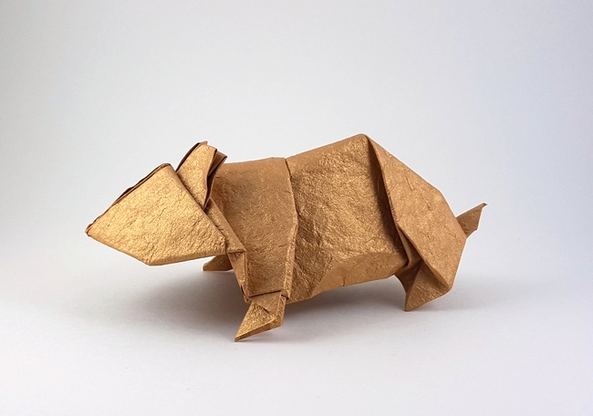 Origami Guinea Pig (Ladislav Kaňka) - YouTube | 456x650