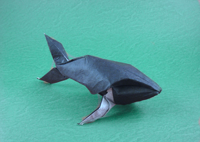 Origami Humpback whale by Michael G. LaFosse Wet-folded from a square of double-sided Unryu paper by Gilad Aharoni on giladorigami.com