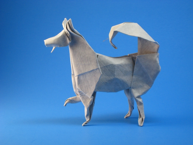 Origami Husky by John Montroll Wet folded from a square of cardstock by Gilad Aharoni on giladorigami.com