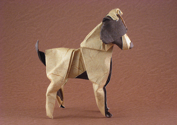 Origami Jack Russel Terrier by Nathan Geller Wet-folded from a square of double-sided mulberry paper by Gilad Aharoni on giladorigami.com