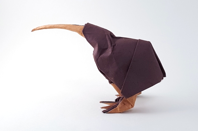 Origami Kiwi By Roman Diaz Folded Gilad Aharoni On Giladorigami