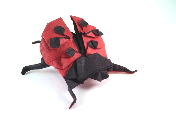 Origami Ladybug by Marc Kirschenbaum Folded from a square of double-sided Unryu paper by Gilad Aharoni on giladorigami.com
