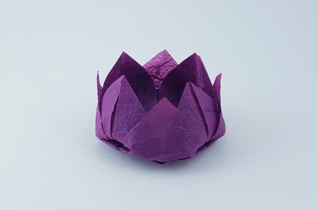 Origami Lotus flower by Traditional folded by Gilad Aharoni on giladorigami.com