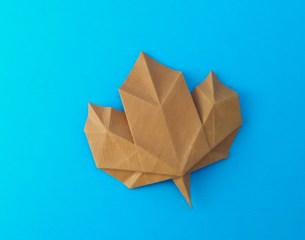 Origami Flowers by Michael G. LaFosse and Richard L ... - photo#30