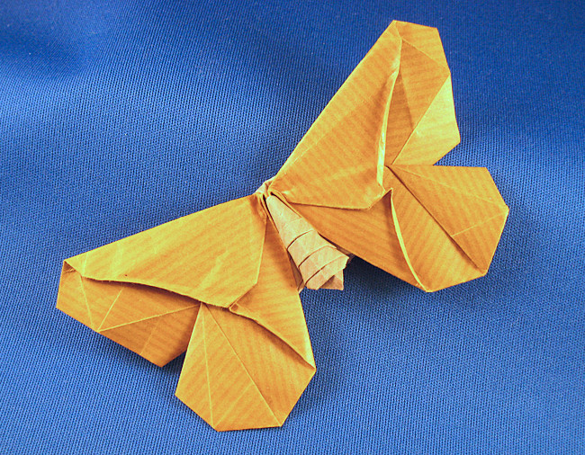 Origami Butterflies by Richard L. Alexander and Greg ... - photo#45