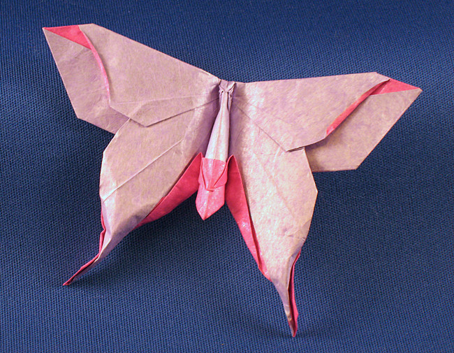 Origami Moth - Mudarri Luna by Michael G. LaFosse folded by Gilad Aharoni on giladorigami.com