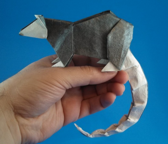 Origami Opossum by Aaron Einbond folded by Gilad Aharoni on giladorigami.com
