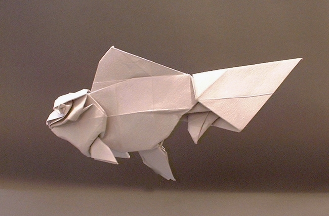 Origami Goldfish - Oranda by Ronald Koh Folded from a square of silver art-paper by Gilad Aharoni on giladorigami.com