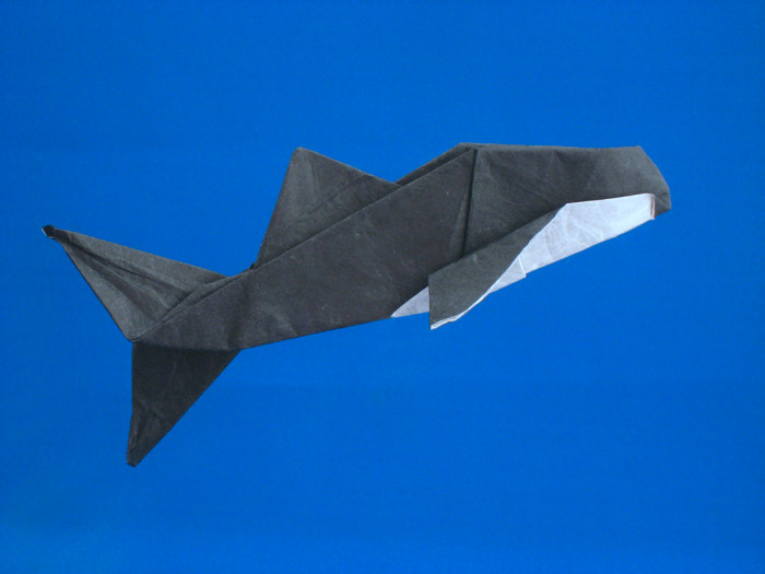 Origami Killer whale by Kunihiko Kasahara Folded from a square of double-sided unryu paper by Gilad Aharoni on giladorigami.com