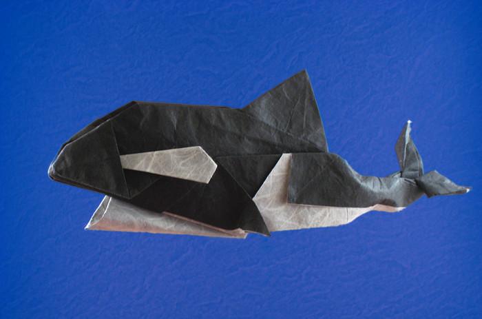 Origami Orca By Otani Tooru Folded Gilad Aharoni