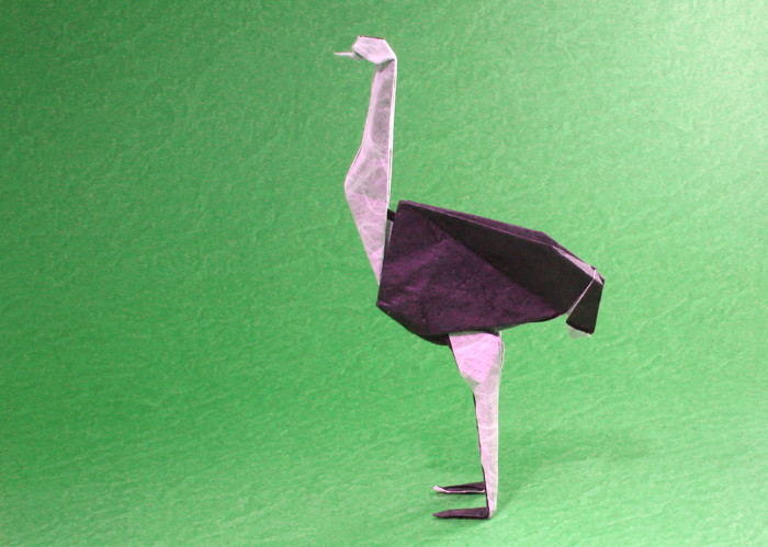 Origami Ostrich by Pasquale d'Auria Folded from a square of double-sided Unryu paper by Gilad Aharoni on giladorigami.com