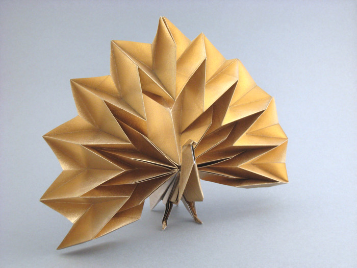 Origami Peacock By Jun Maekawa Folded Gilad Aharoni On Giladorigami