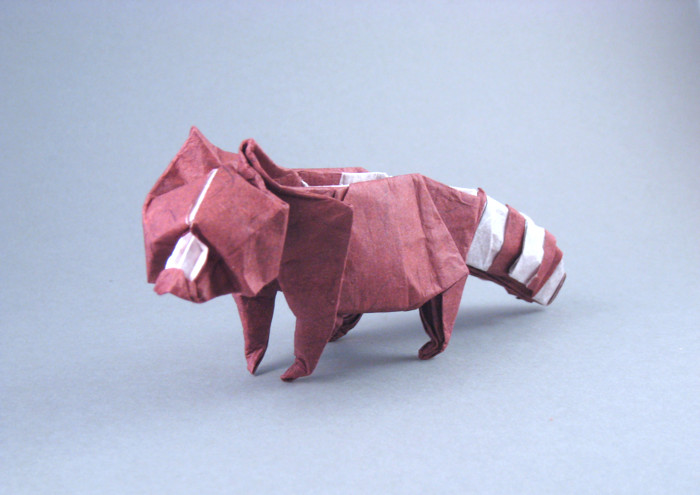 Origami Raccoon by John Montroll folded by Gilad Aharoni on giladorigami.com