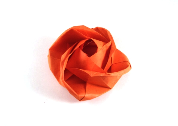 Origami Rose by Evi Binzinger folded by Gilad Aharoni