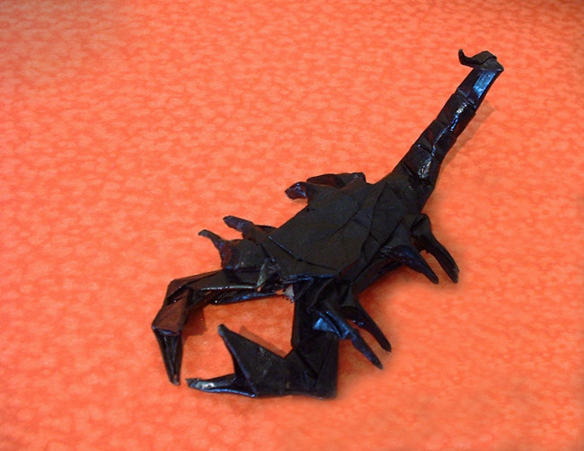Origami Scorpion by Robert J. Lang Folded from a square of origami paper by Gilad Aharoni on giladorigami.com