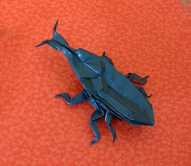 Origami Long necked seed bug by Robert J. Lang folded by Gilad Aharoni