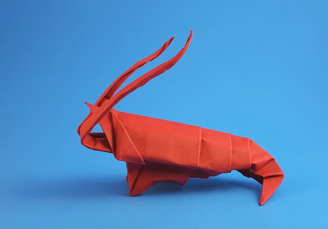 Origami Shrimp by Akira Yoshizawa Wet folded from a triangle of cardstock by Gilad Aharoni on giladorigami.com