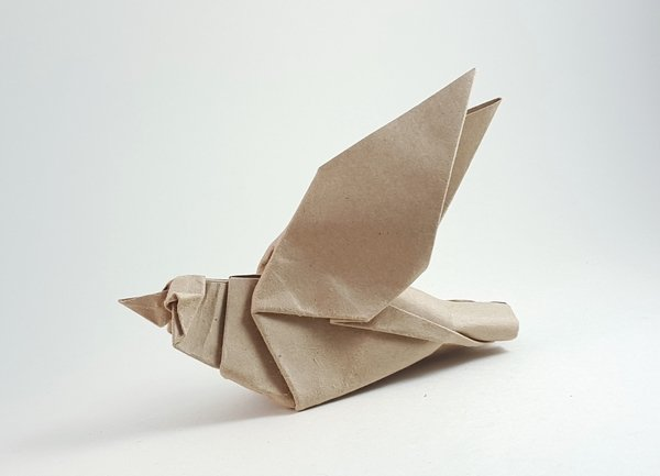 Origami Sparrow by Seth M. Friedman folded by Gilad Aharoni