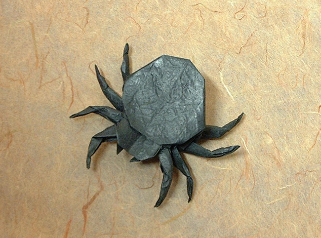 Origami Spider by John Montroll folded by Gilad Aharoni