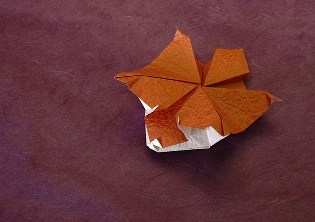Origami Flying squirrel by Kunihiko Kasahara folded by Gilad Aharoni